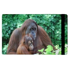 Orangutan Family Apple Ipad 3/4 Flip Case by AnimalLover