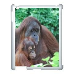 Orangutan Family Apple Ipad 3/4 Case (white) by AnimalLover