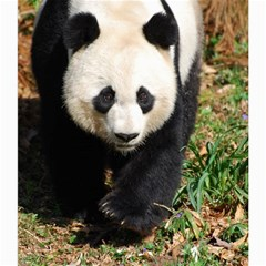 Giant Panda Canvas 20  X 20  (unframed) by AnimalLover