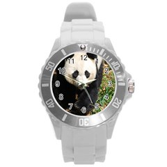 Giant Panda Plastic Sport Watch (large) by AnimalLover