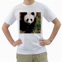 Giant Panda Men s T-Shirt (White)  by AnimalLover