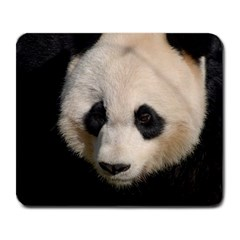 Adorable Panda Large Mouse Pad (rectangle) by AnimalLover