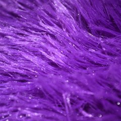 Purple Tresses Canvas 12  X 12  (unframed) by FunWithFibro