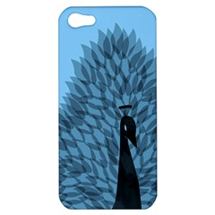 Flaunting Feathers Apple Iphone 5 Hardshell Case by Contest1893972