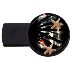 Star Fish 4gb Usb Flash Drive (round) by Rbrendes