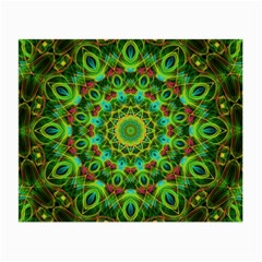 Peacock Feathers Mandala Glasses Cloth (small) by Zandiepants