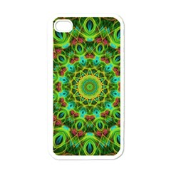 Peacock Feathers Mandala Apple Iphone 4 Case (white) by Zandiepants