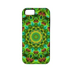 Peacock Feathers Mandala Apple Iphone 5 Classic Hardshell Case (pc+silicone) by Zandiepants