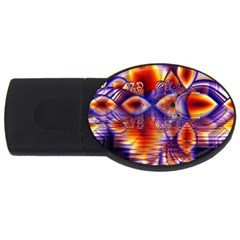 Winter Crystal Palace, Abstract Cosmic Dream Usb Flash Drive Oval (2 Gb)