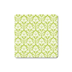 White On Spring Green Damask Magnet (square) by Zandiepants