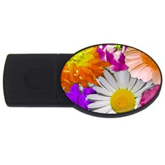 Lovely Flowers,purple 2gb Usb Flash Drive (oval) by ImpressiveMoments