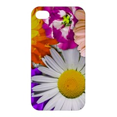 Lovely Flowers,purple Apple Iphone 4/4s Hardshell Case by ImpressiveMoments