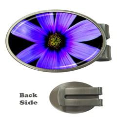 Purple Bloom Money Clip (oval) by BeachBum