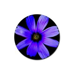 Purple Bloom Drink Coaster (round) by BeachBum
