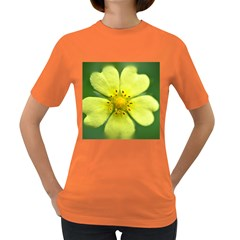 Yellowwildflowerdetail Women s T Shirt (colored)