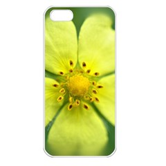 Yellowwildflowerdetail Apple Iphone 5 Seamless Case (white) by bloomingvinedesign