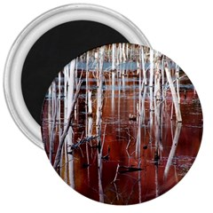 Swamp2 Filtered 3  Button Magnet by cgar