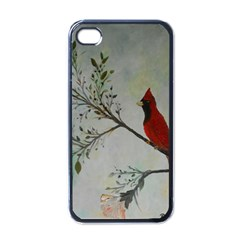 Sweet Red Cardinal Apple Iphone 4 Case (black) by rokinronda