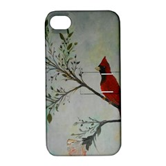 Sweet Red Cardinal Apple Iphone 4/4s Hardshell Case With Stand by rokinronda