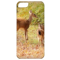 Deer In Nature Apple Iphone 5 Classic Hardshell Case by uniquedesignsbycassie