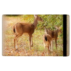 Deer In Nature Apple Ipad 3/4 Flip Case by uniquedesignsbycassie
