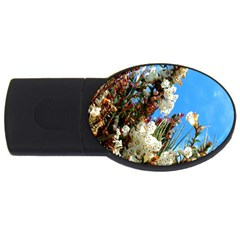 Australia Flowers 2gb Usb Flash Drive (oval) by Rbrendes