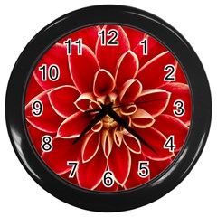 Red Dahila Wall Clock (black) by Colorfulart23