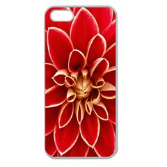 Red Dahila Apple Seamless Iphone 5 Case (clear) by Colorfulart23