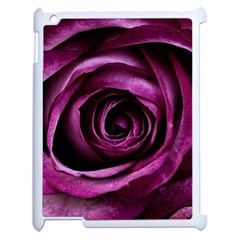 Deep Purple Rose Apple iPad 2 Case (White) by Colorfulart23