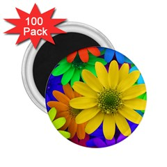 Gerbera Daisies 2 25  Button Magnet (100 Pack) by StuffOrSomething