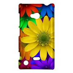 Gerbera Daisies Nokia Lumia 720 Hardshell Case by StuffOrSomething