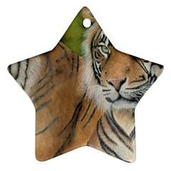 Soft Protection Star Ornament by TonyaButcher