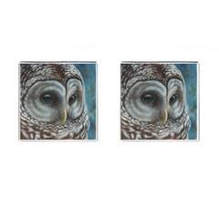 Barred Owl Cufflinks (square) by TonyaButcher
