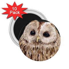 Tawny Owl 2 25  Button Magnet (10 Pack) by TonyaButcher