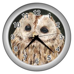 Tawny Owl Wall Clock (Silver)