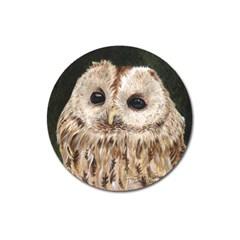 Tawny Owl Magnet 3  (round) by TonyaButcher