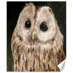 Tawny Owl Canvas 20  X 24  (unframed) by TonyaButcher