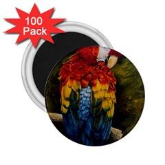 Preening 2 25  Button Magnet (100 Pack) by TonyaButcher