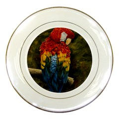 Preening Porcelain Display Plate by TonyaButcher