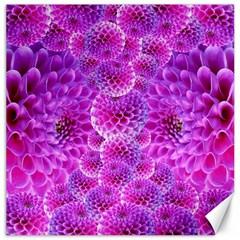 Purple Dahlias Canvas 20  X 20  (unframed) by FunWithFibro
