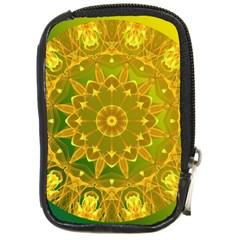 Yellow Green Abstract Wheel Of Fire Compact Camera Leather Case by DianeClancy