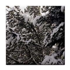 Snowy Trees Ceramic Tile by DmitrysTravels