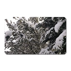 Snowy Trees Magnet (rectangular) by DmitrysTravels