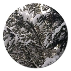 Snowy Trees Magnet 5  (round) by DmitrysTravels
