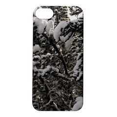 Snowy Trees Apple Iphone 5s Hardshell Case by DmitrysTravels