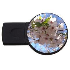 Sakura 4gb Usb Flash Drive (round) by DmitrysTravels