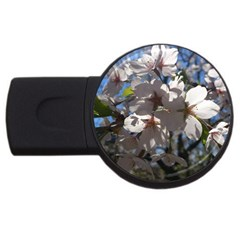 Cherry Blossoms 2gb Usb Flash Drive (round) by DmitrysTravels