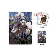 Cherry Blossoms Playing Cards (mini) by DmitrysTravels