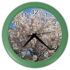 Cherry Blossoms Tree Wall Clock (color) by DmitrysTravels