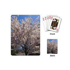 Cherry Blossoms Tree Playing Cards (mini) by DmitrysTravels